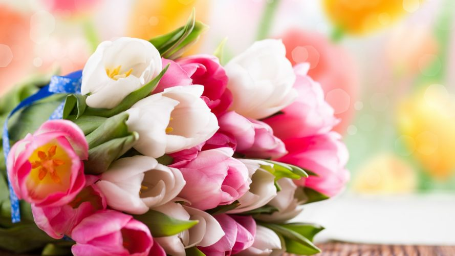bouquet flowers tulips color wallpaper