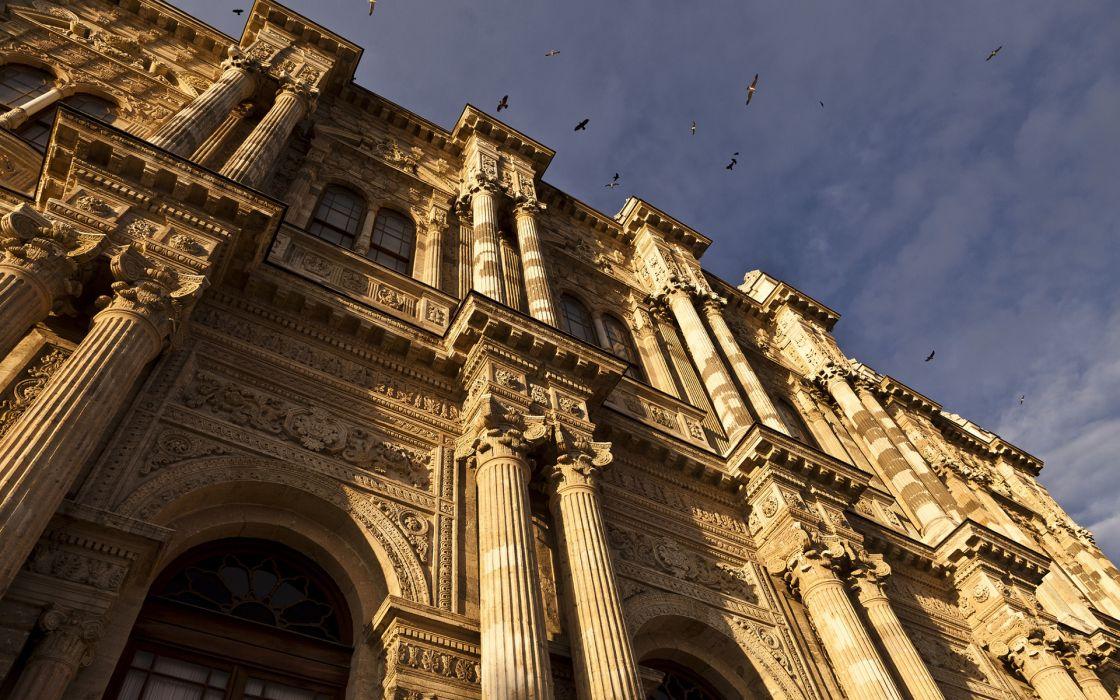 buildings birds wallpaper