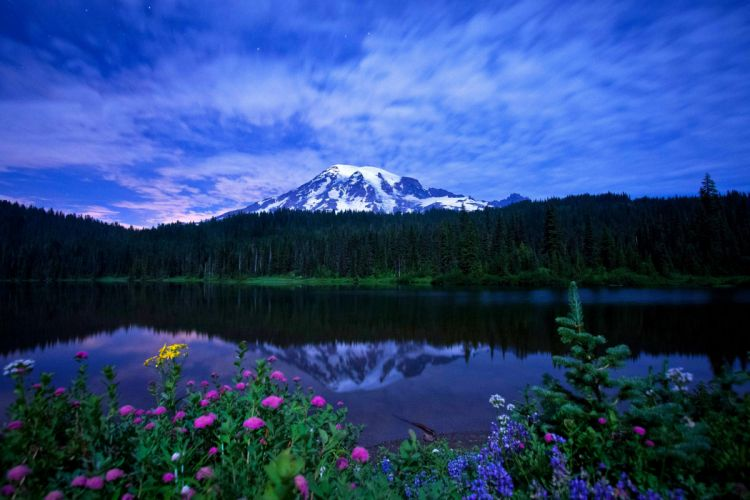 flowers lakes mountains sky reflection trees wallpaper