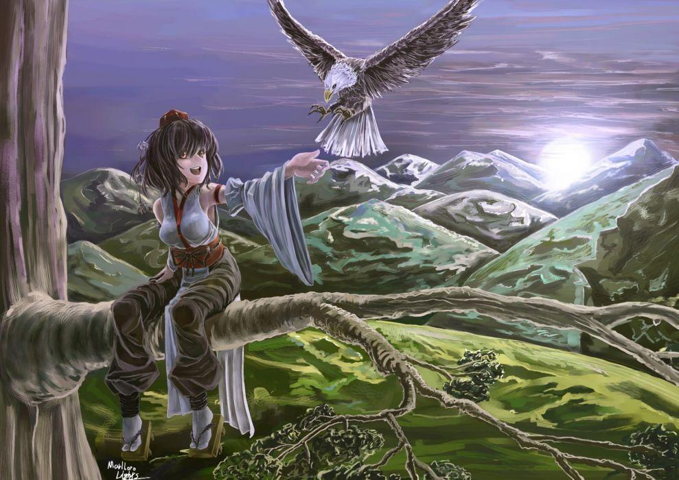 Art  marubororaito  touhou  Shameimaru aya  tree  night  bird  girl  mountains wallpaper