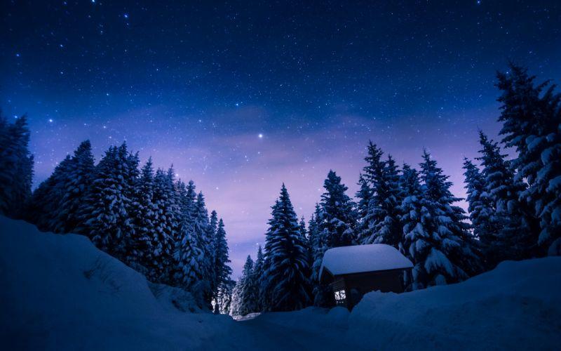 Trees Snow Winter Night Stars Cabin Path Trail trees sky wallpaper
