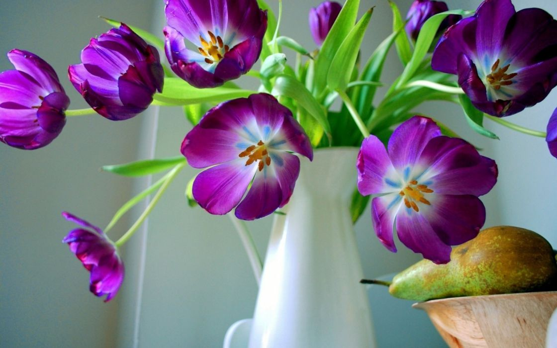vase flowers pear tulip still life wallpaper