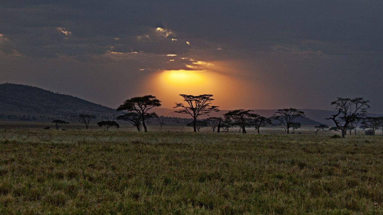 Africa Kenya savannah sunset sky clouds trees wallpaper