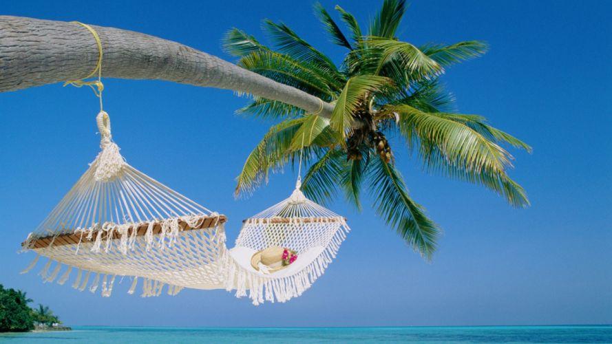 beaches hammock palm trees ocean sea tropical wallpaper