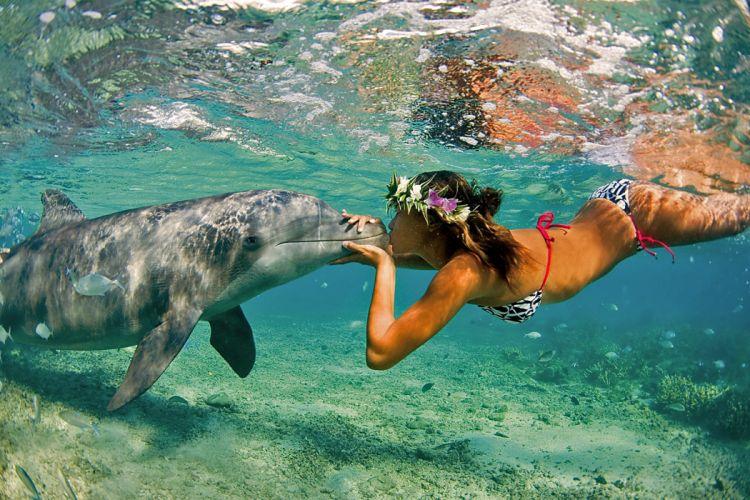 Dolphin girl ocean sea Nature Summer Kiss women females girls bikini ocean wallpaper