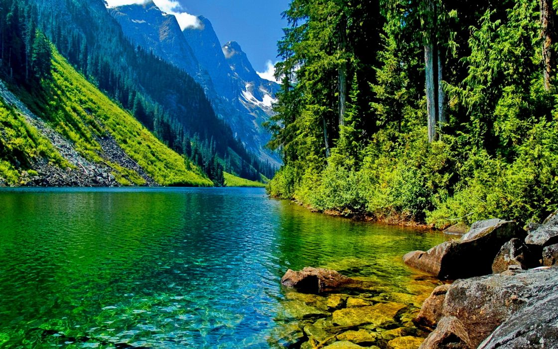 river trees forest mountains wallpaper