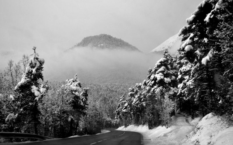winter season grayscale roads mountains trees forest black white wallpaper