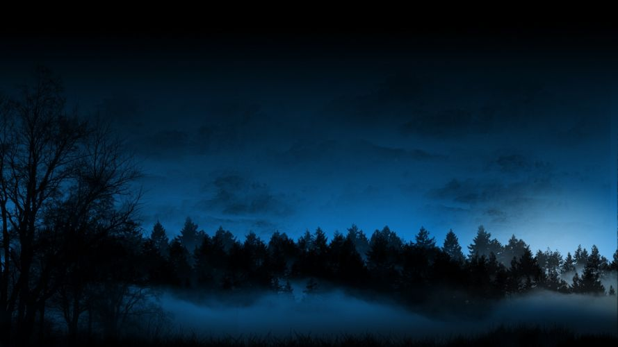 Trees Forest Night Fog Mist Blue CG sky wallpaper