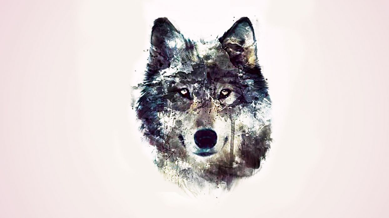 abstraction wolves background eyes wolf abstract wallpaper