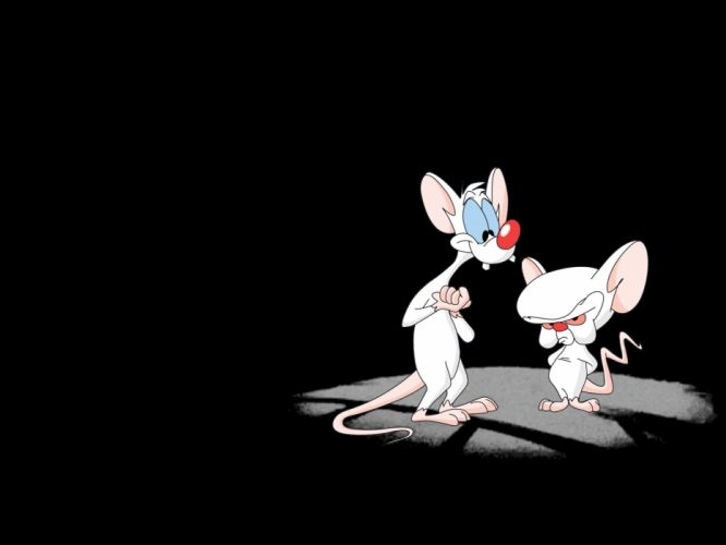 Pinky And The Brain w wallpaper