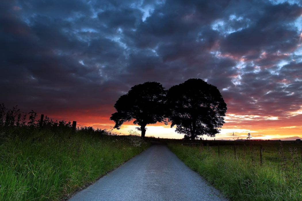 road  sunset  trees  landscape sky clouds wallpaper
