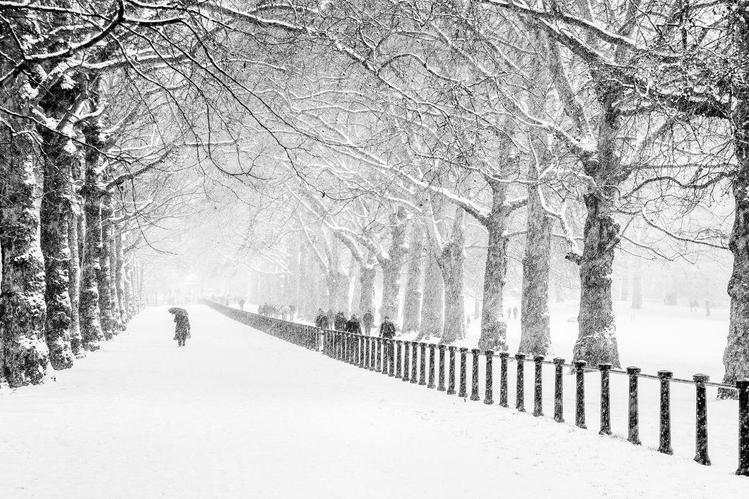 winter snow people park city London road trees wallpaper