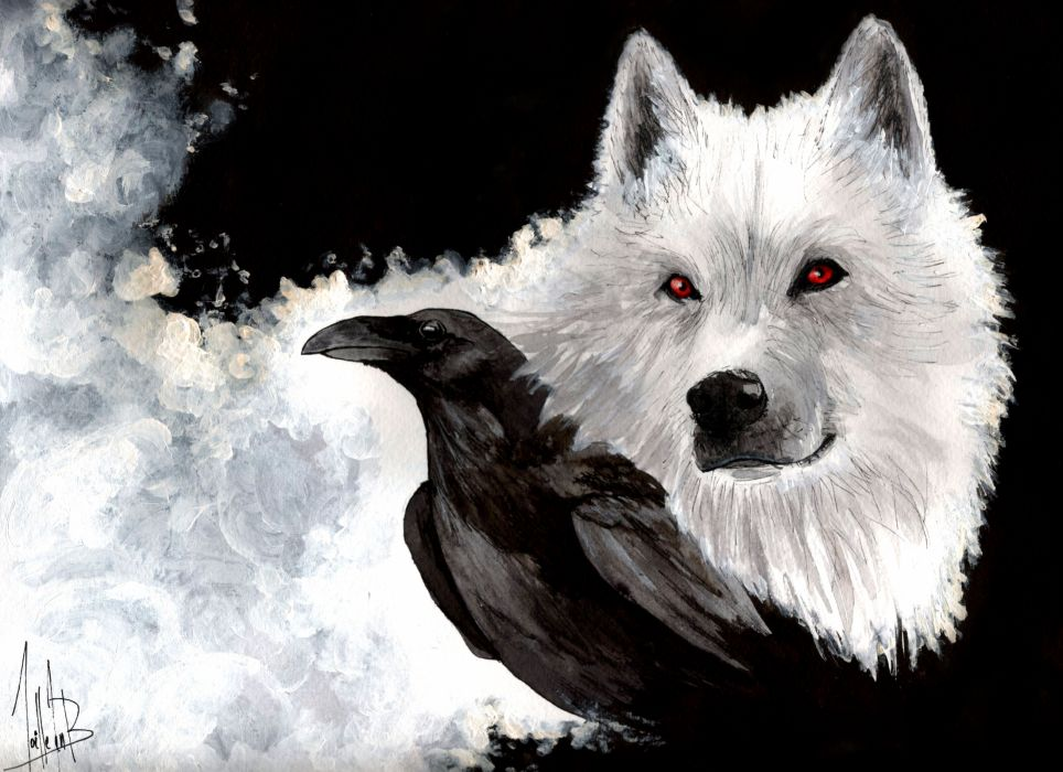 Wolves Crows Glance Animals wallpaper
