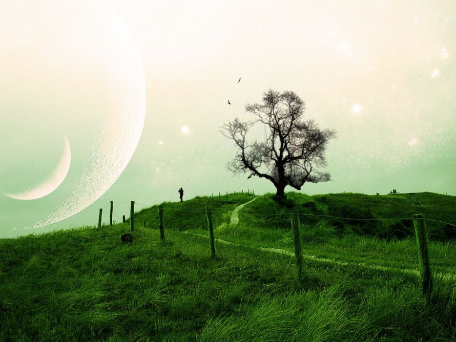 people landscapes trees sky moon planets sci-fi bords mood wallpaper