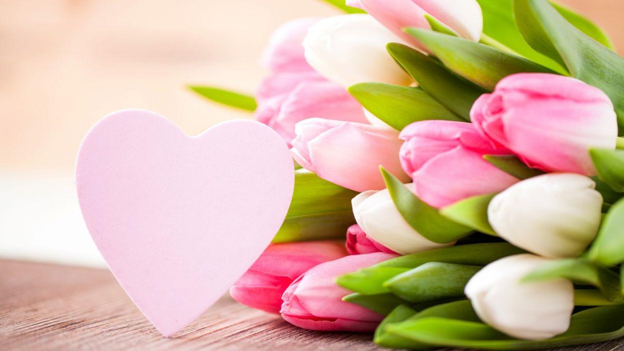 tulips heart holidays wallpaper