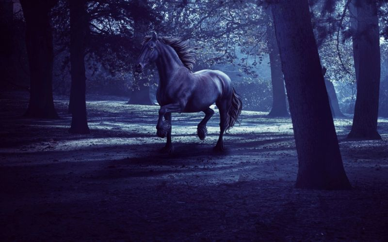 horse forest dusk darkness night horse trees rendering trees 3d wallpaper
