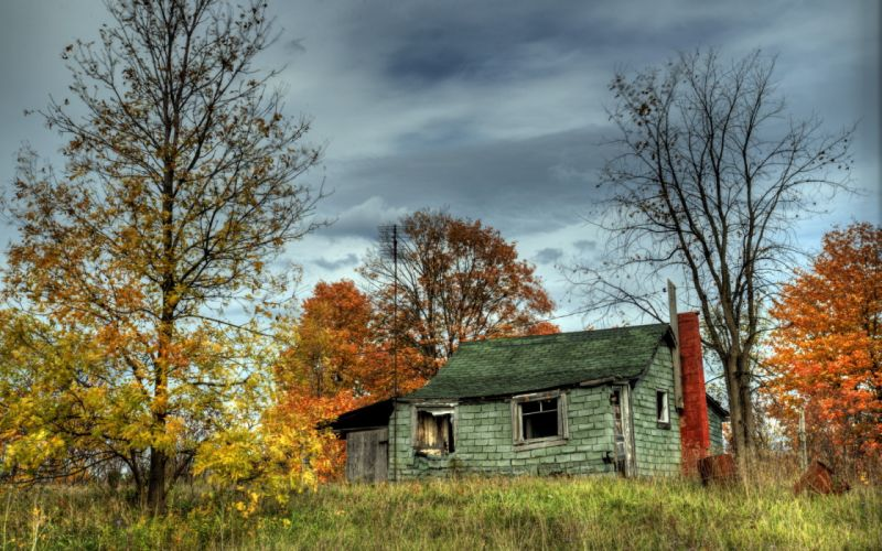 house trees autumn building hdr autumn trees wallpaper
