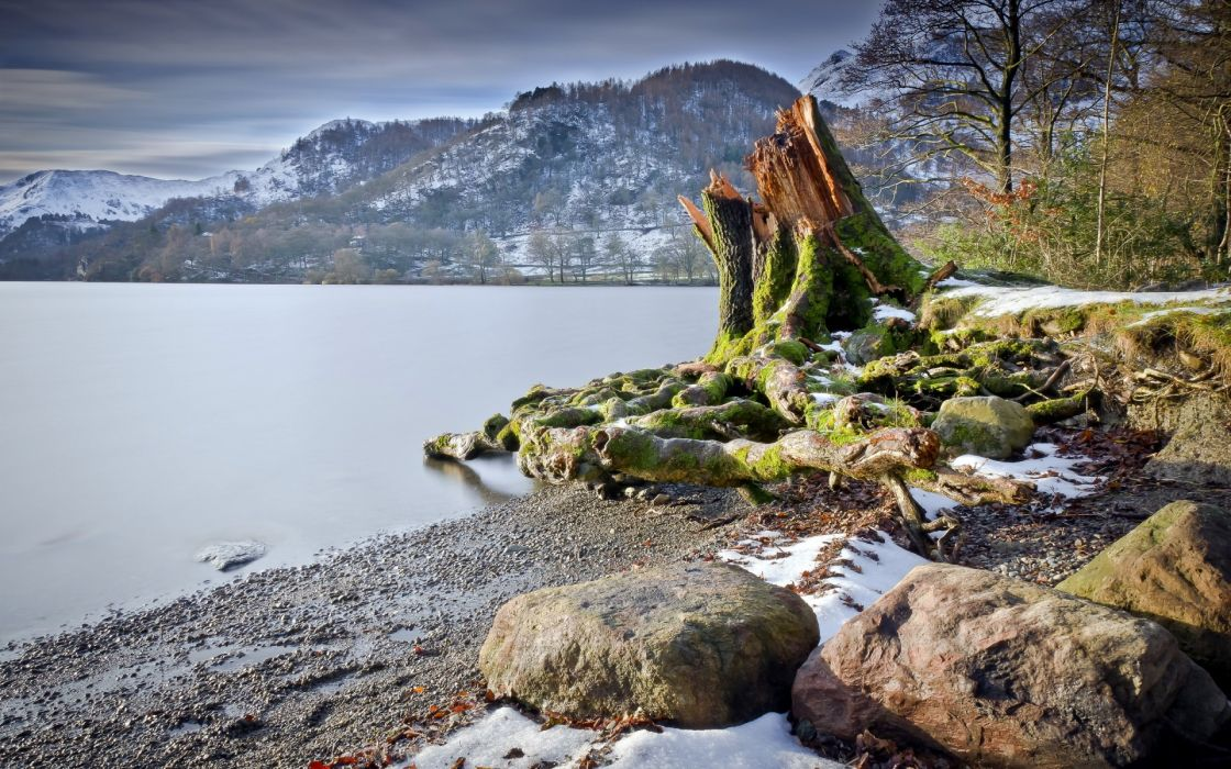 lake  summer  tree stump  nature  landscape beaches mountains wallpaper