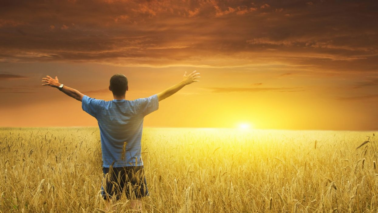 men males mood sunset sunrise landscapes fields grass wheat sky wallpaper