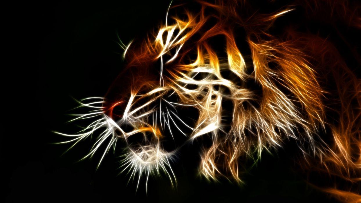 tiger fractal cats     e wallpaper