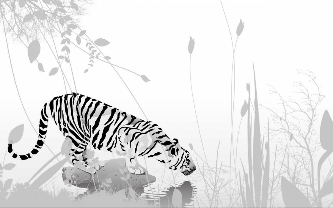Tiger Vector Art Wallpaper 1920x1200 48632 Wallpaperup