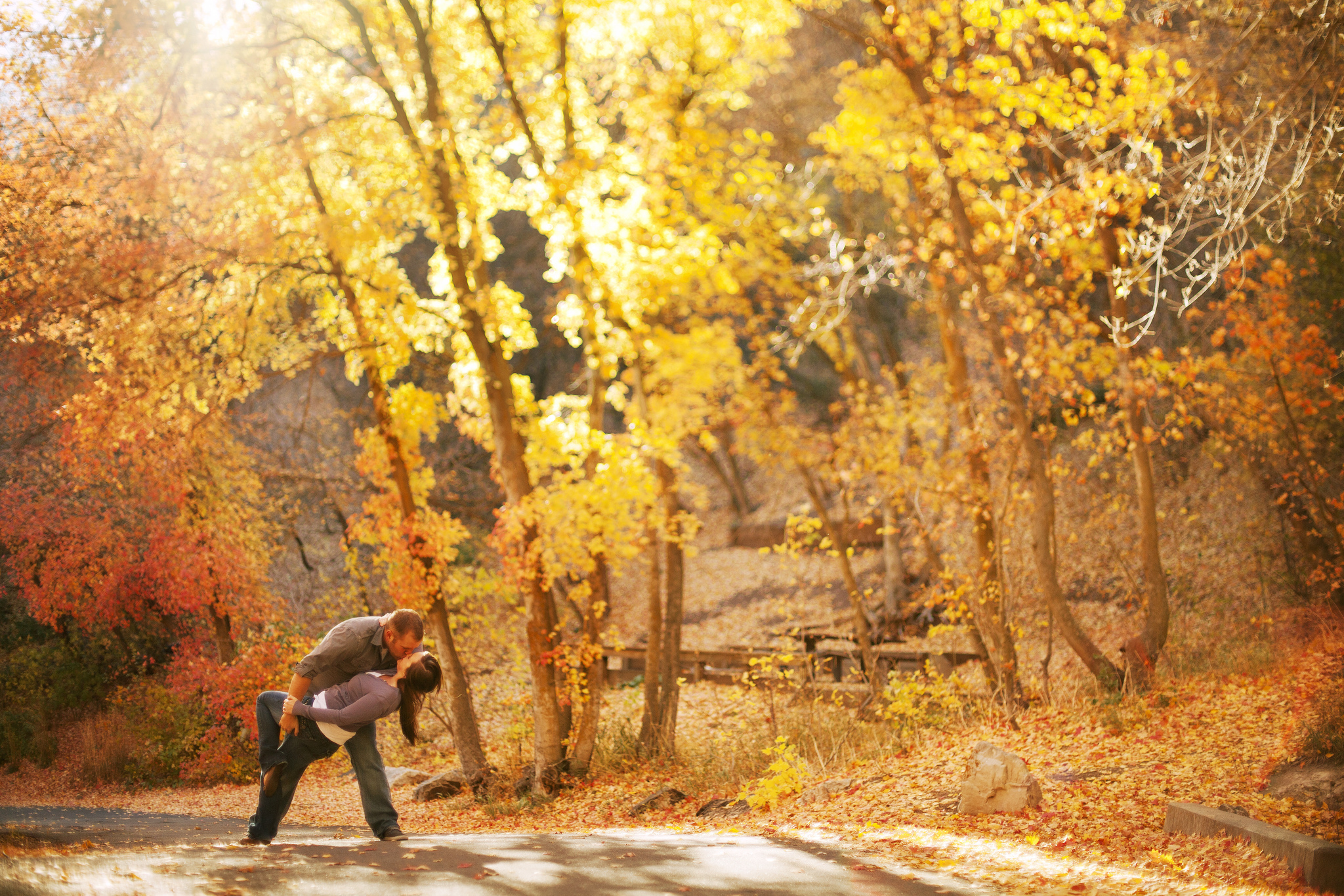 Autumn trees couple trees forest leaves fall love mood men males women females girls wallpaper ...