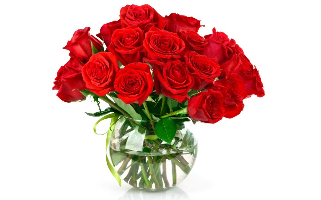 Bouquet red roses pot water flowers wallpaper