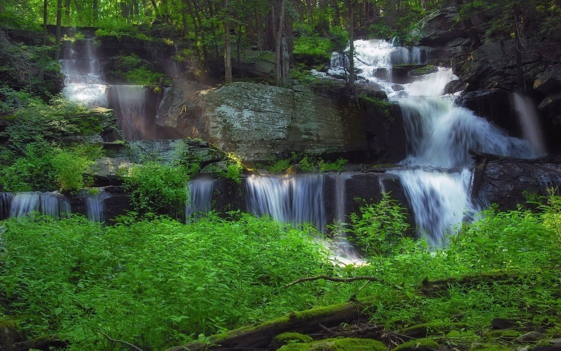 waterfall trees forest rivers wallpaper