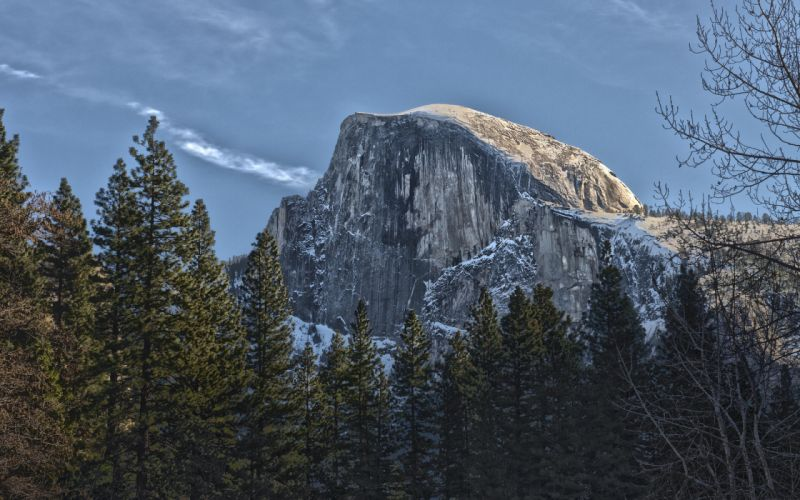 Yosemite Cliff Mountain Trees Forest wallpaper