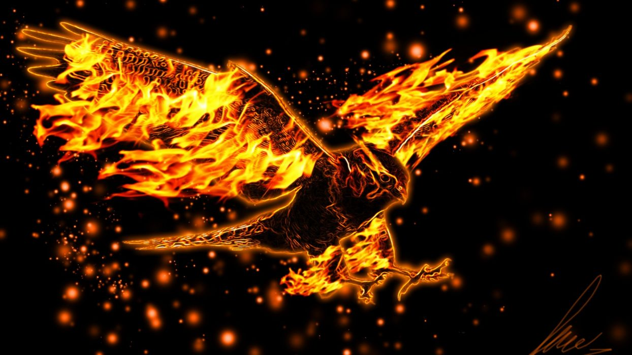 burning eagle flight wings fire abstract wallpaper