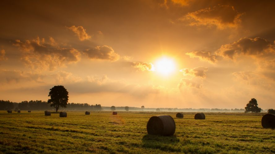 sunset field hay nature landscape wallpaper
