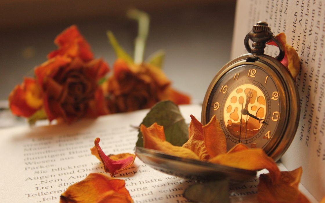 flowers books petals pocket watches rose mood clock book text wallpaper