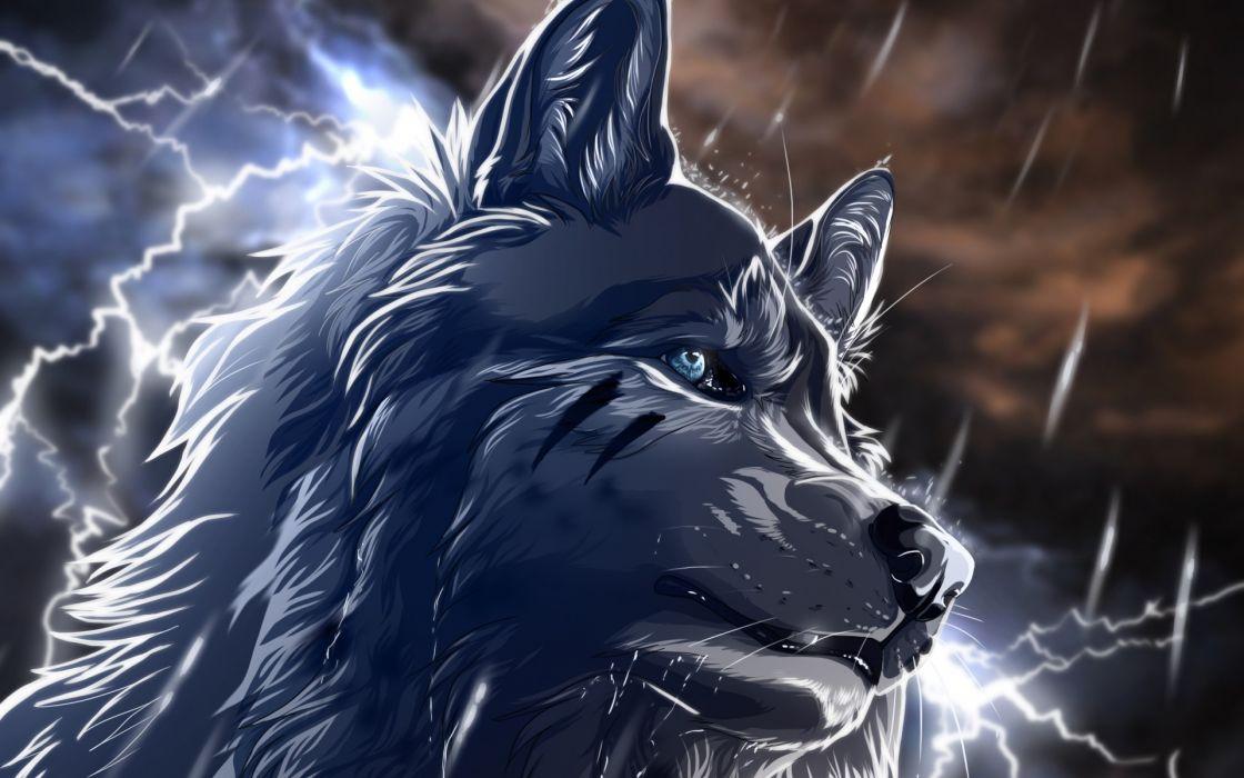 art wolfroad Wolf rain lightning night fantasy animals wallpaper