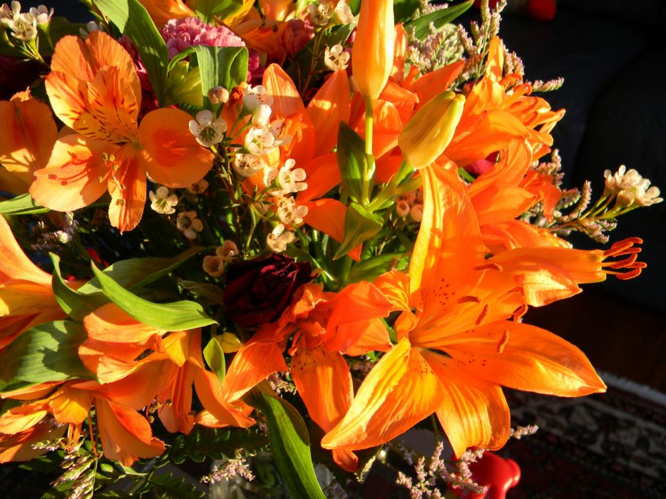 Alstroemeria Orange Flowers bouquet wallpaper