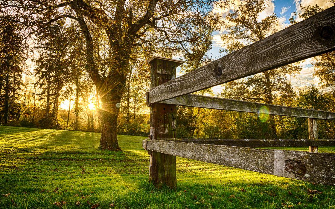 Fence Sunlight Trees Grass sunset wallpaper
