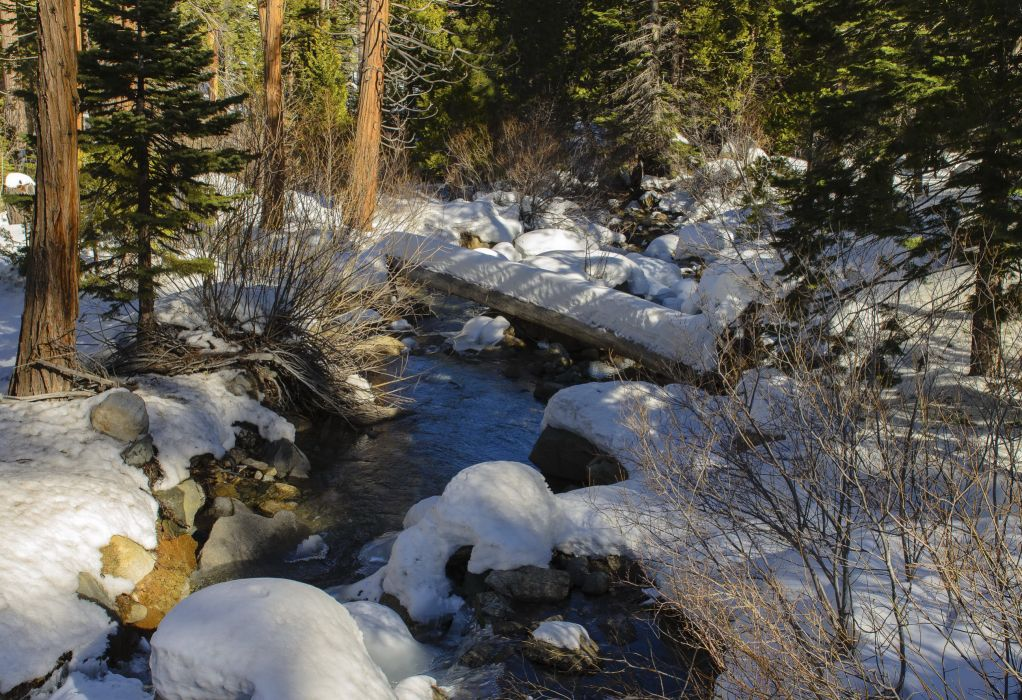 Forests Stream Snow Nature rivers trees winter wallpaper