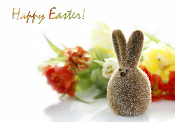 Holidays Easter rabbit wallpaper