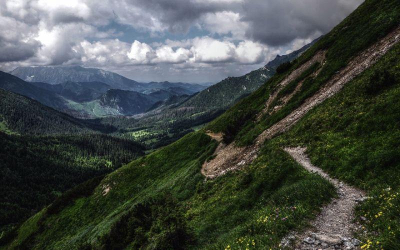 nature landscape mountain road green wallpaper
