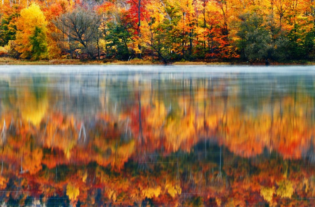 USA New England New Hampshire nature morning lake wood paint Klaus Brandstaetter Photography trees autumn fall reflection wallpaper
