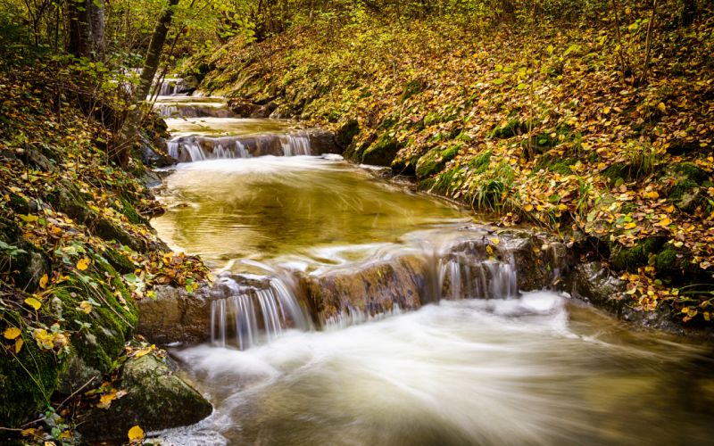 Waterfall Stream Forest Timelapse trees river autumn wallpaper
