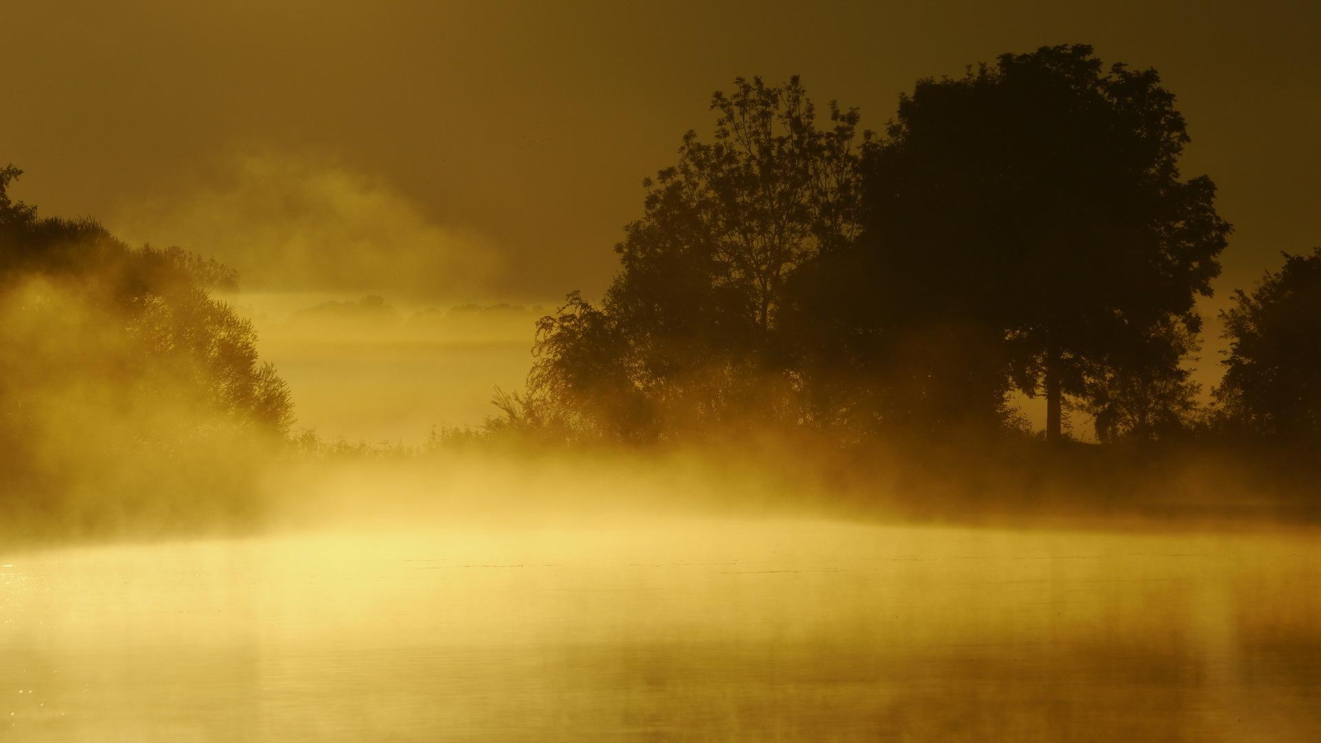31 beautiful desktop wallpapers of mist