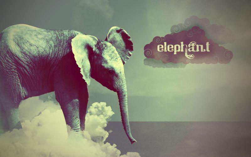 elephant cloud style art text wallpaper