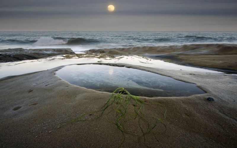 Sea pool sand moon algae plants grass beaches waves ocean sky clouds reflection wallpaper