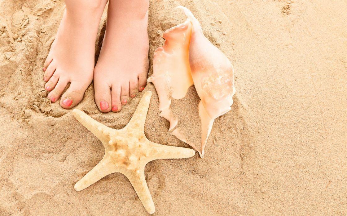 seashells  beach  legs  summer  Sand shells toes feet starfish women females girls mood wallpaper