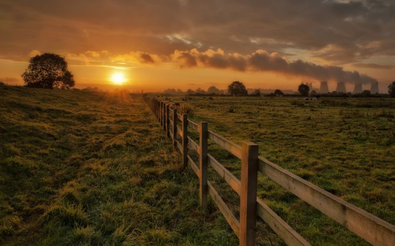 Corral fence fencing cows grass trees sun evening sunset sky clouds nuclear radiation landscapes wallpaper