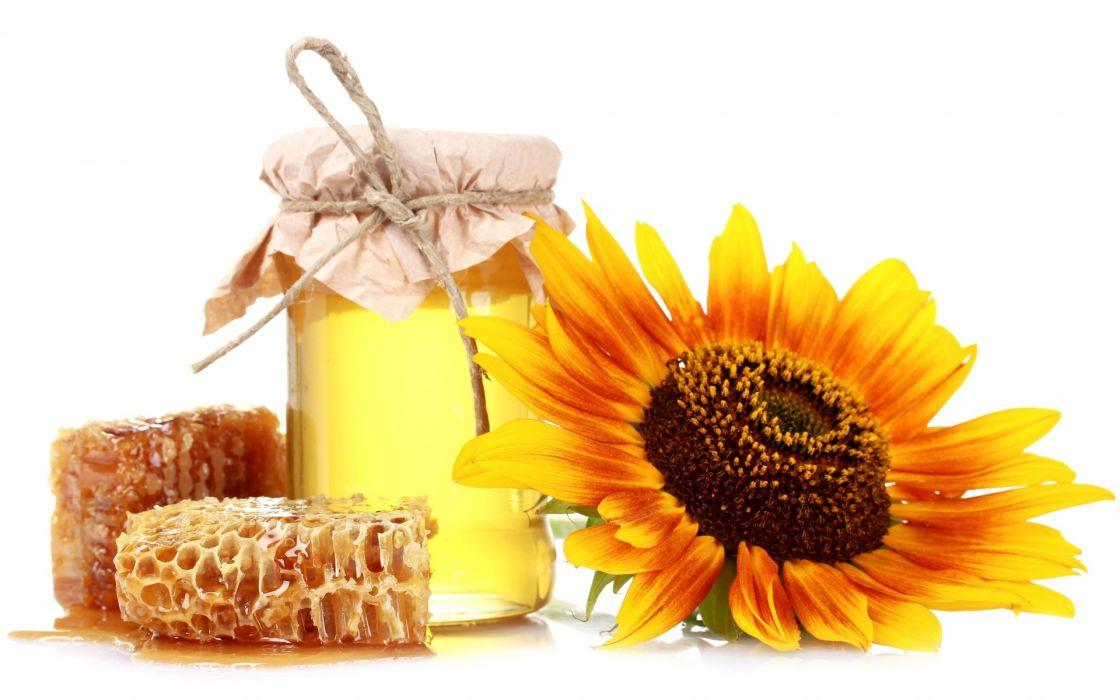 honey  honeycomb  bank  sunflower  white still life color sweets wallpaper