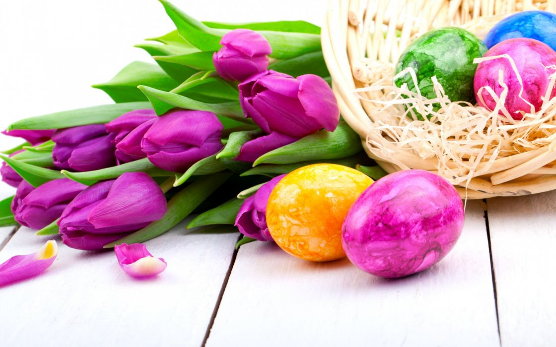 tulips purple flowers spring holiday Easter eggs wallpaper