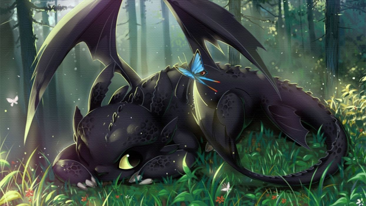 How to Train Your Dragon Cartoons      r wallpaper