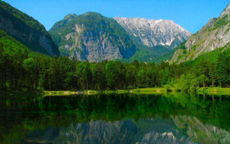 mountains landscapes nature forest wallpaper