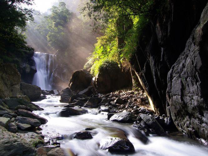 nature trees waterfalls rivers wallpaper